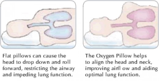 the Oxygen pillow - people LOVE this pillow