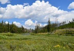 Images of Yellowstone - A Photo Gallery