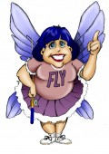 The Flylady will help you take control of the clutter in your home.