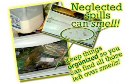 Spills and over loading your refrigerator can lead to bad smells if not cleaned properly with essential oils!