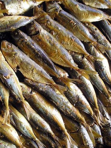 Tinapa - Smoked Fish by ~MVI~