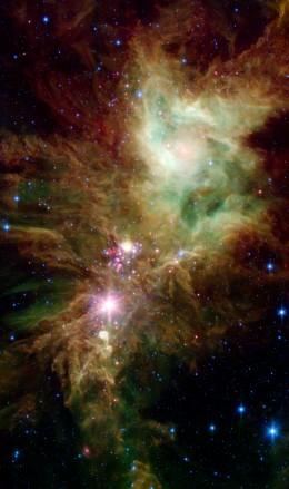 Christmas Tree Cluster Nebula, NGC 2264