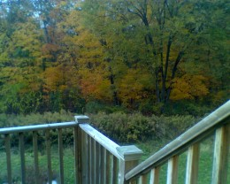 Fall foliage enjoyed from our back deck