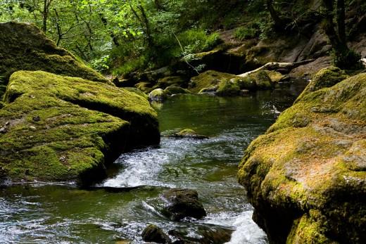 Goitha Falls on the River Fowey