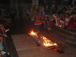 (India) Sri Lankan Firewalker.