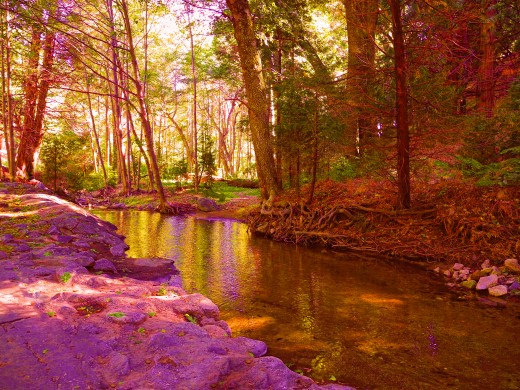 By using a photo filter (violet) I created more drama to this autumn creek..