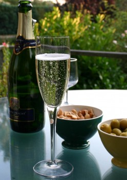 Champagne in a Tulip Glass