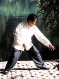Qigong:  Healing Exercises For A Strong Healthy Body