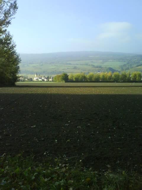 Autumn Scenery - Biel, Le Landeron - Walk Along The River
