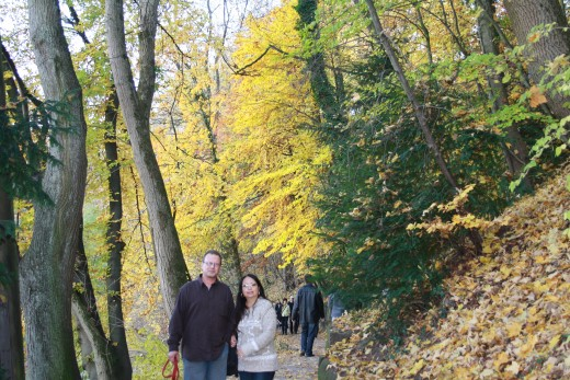Autumn Scenery - Bern - Walk Along The River