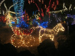 A pretty lighted horse drawn wagon among the lights.