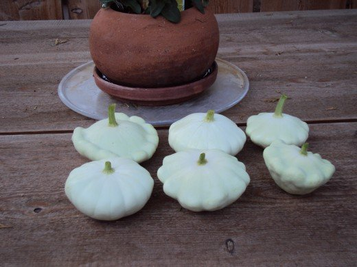 The patty pan squash sitting on the table.