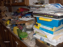 Help Organize Yourself Or Someone You love