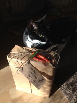 Cat not included in wrapping!