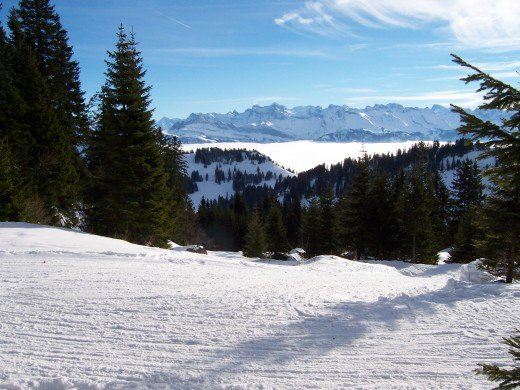 Typical Swiss winter scene: Fog in the valley, sun in the mountains