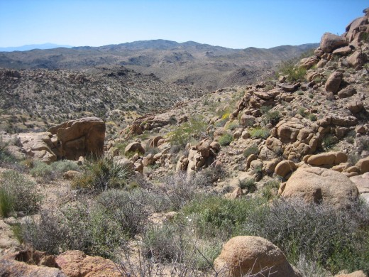 View Along Mastodon Peak Trail