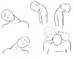 Head to Toe Exercises