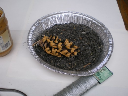 wired pine cone with peanut butter, rolling in sunflower seeds