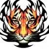 nicole gr profile image