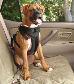 Large Dog Car Harness