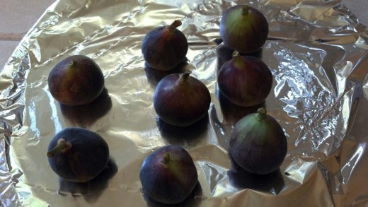 Fresh Figs from my back yard.