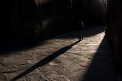 Prose - The Shadow Reveals No Purpose