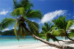 What To Do In The Seychelles On Vacation, Extreme Water Sports, Tours And Trips