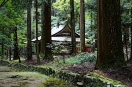 Kozan-ji is located under a beautiful forested canopy.