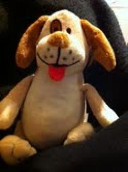 devil dog toy