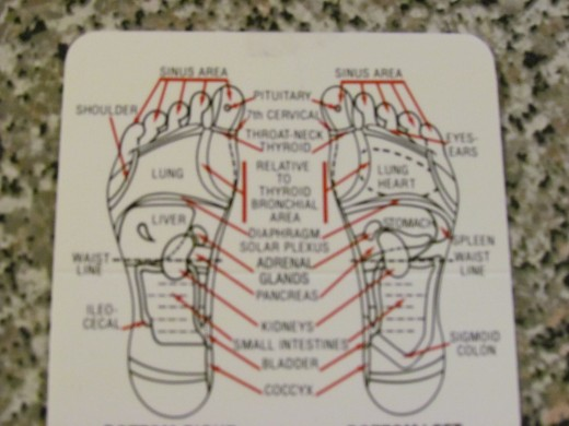 Diagram of left and right feet from the International Institute of reflexology.
