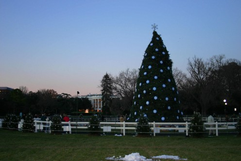 The National Christmas Tree in 2005