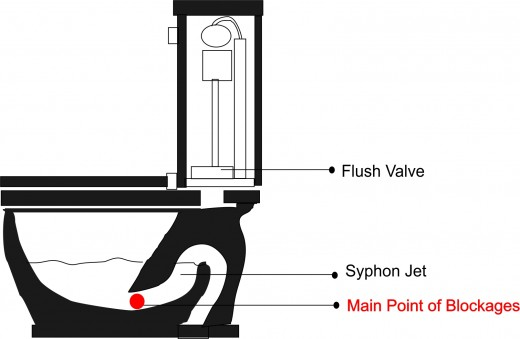 Section of A Toilet