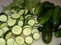 Growing Cucumbers Organically