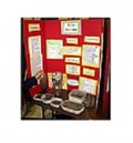 Science Fair Projects - Project Boards and Displays
