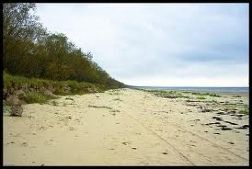 The sandy coast of Latvia eastward opposite Gotland