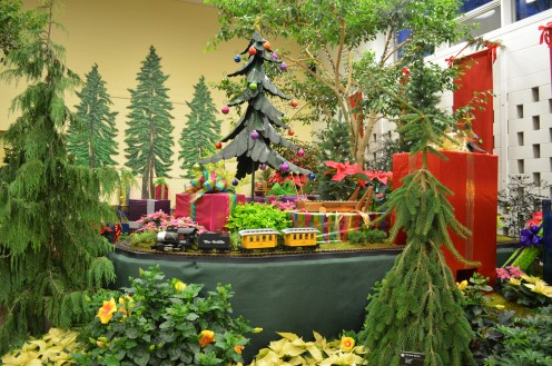The Trains are many and varied every year at the Annual Flower and Train Show at MOBOT.