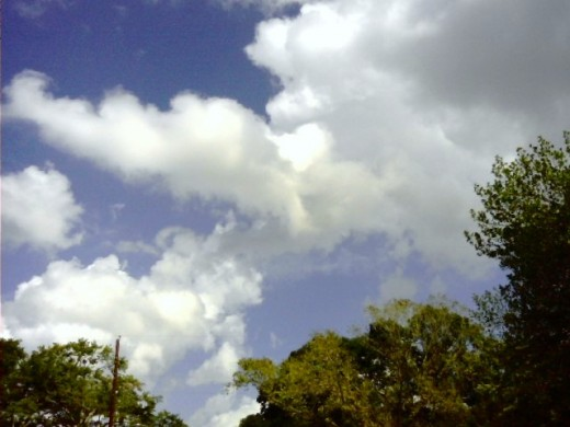 Water Vapor rises in the atmosphere, forming clouds which produce precipitation in the form of fog, rain and snow.