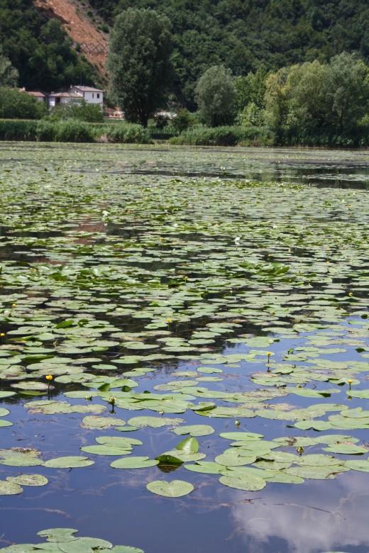Lago di Fimone near Vicenza Italy