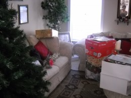 Start bare, empty tree and boxes