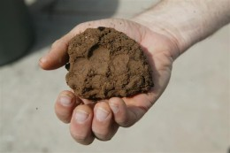 clay soil easily form a ball in your hand