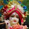 jayraj74 profile image