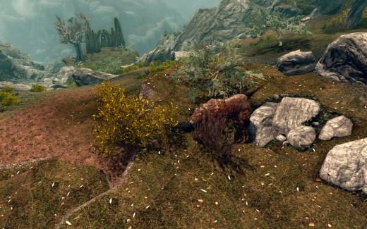 The Cave Bear.