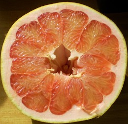 red variety of pomelo