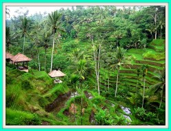 Top 10 Destinations for Tourist on Central Bali