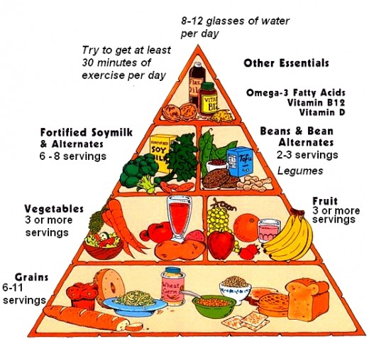 The Vegan Food Pyramid