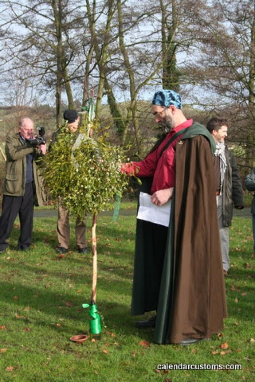 The Druid priests cut Mistletoe from a holy Oak tree with a golden sickle. The branches had to be caught before they touched the ground. The priest then divided the branches and dispersed them to the people, who hung them over doorways as protection.