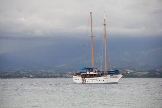 Whales tales off Schooner Island