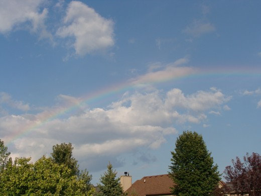 Rainbow from my backyard.