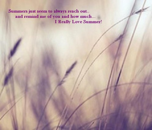 Summer Love  - Copyright © 2012 Pearldiver nzpol with all rights reserved.