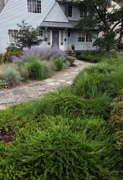 An excellent example of landscaping improvement with xeriscaping